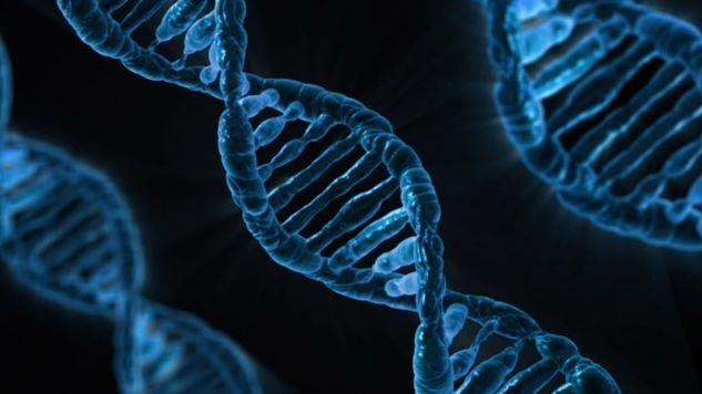 ゲノム編集のイメージ画像